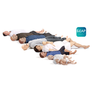 LLEAP Simulator Family with Logo